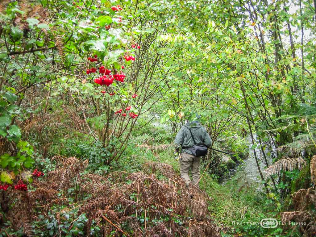 Ambiance-automne-Elorn-BrittanyFlyFishing-8