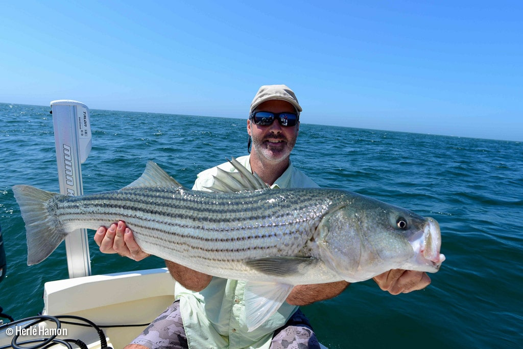 Voyage-USA-Cape-Cod-Brittany-Fly-Fishing-15