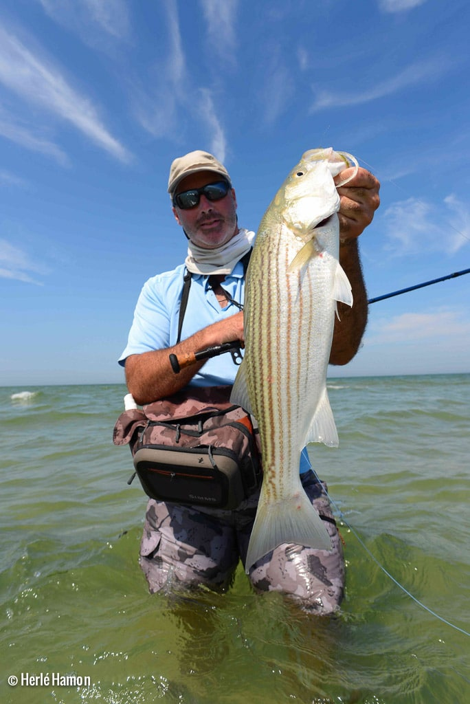 Usa cape cod brittany fly fishing for Fishing cape cod