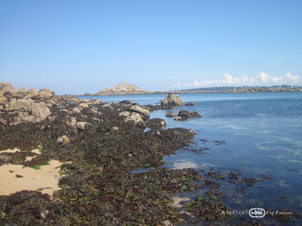 Baie-de-Morlaix-Brittany-Fly-Fishing-12