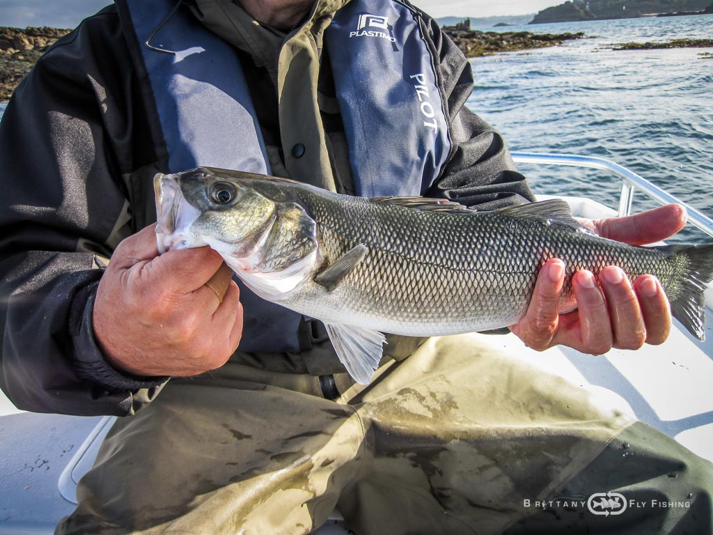 Baie-de-Morlaix-Brittany-Fly-Fishing-17