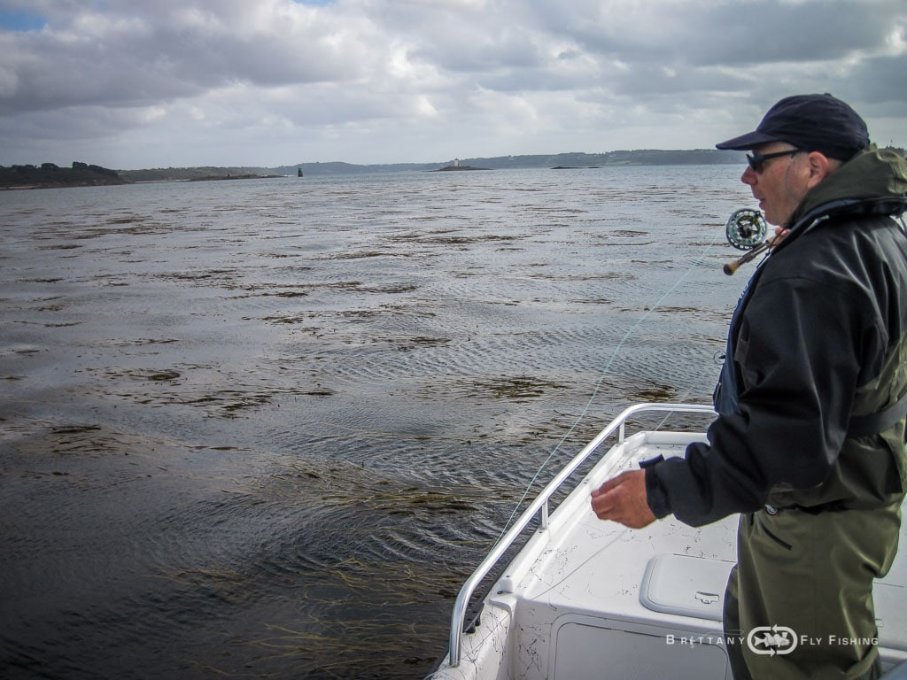 Baie-de-Morlaix-Brittany-Fly-Fishing-7