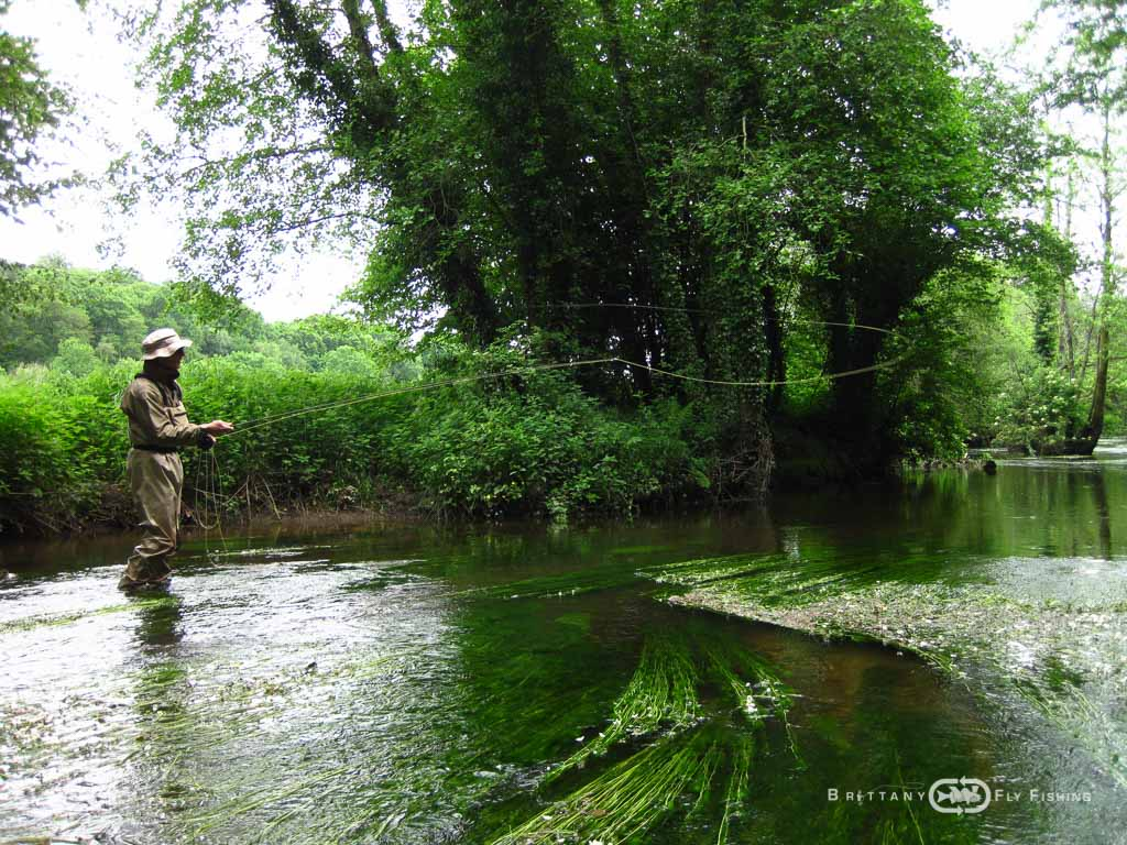 Fliegenfischer-Guide-Brittany-Fly-Fishing-10