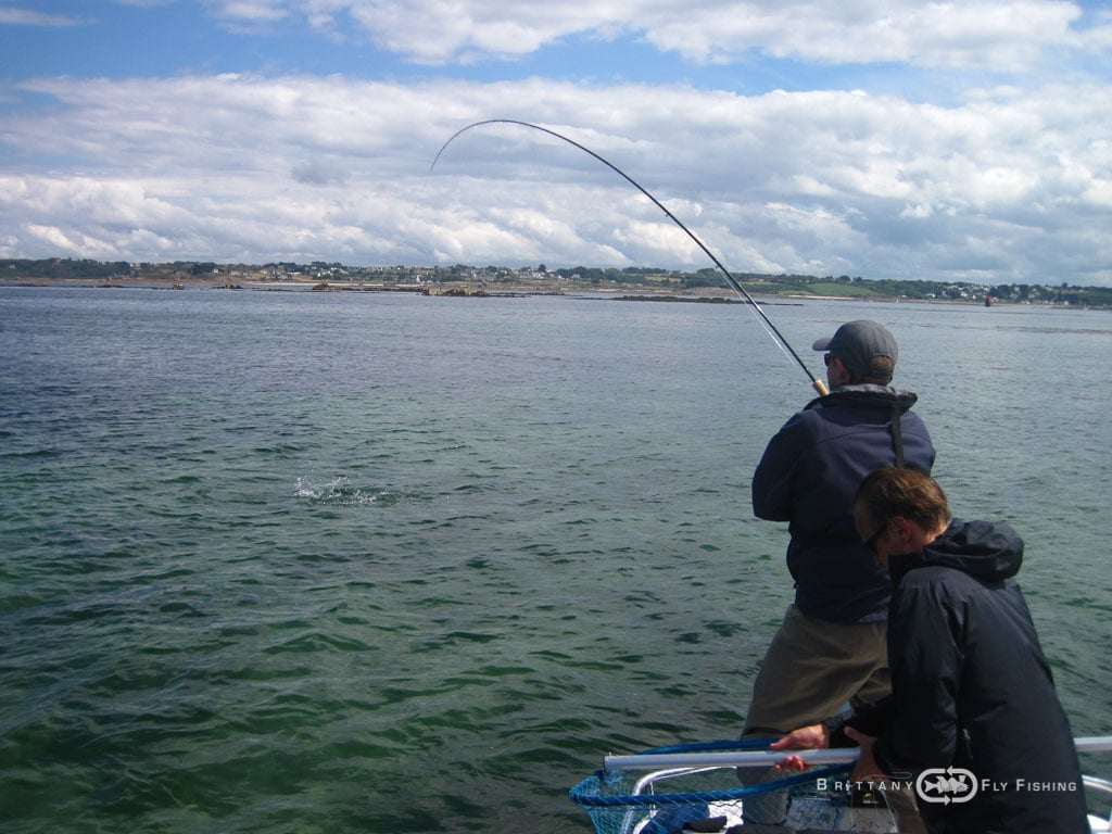 Fliegenfischer-Guide-Brittany-Fly-Fishing-13