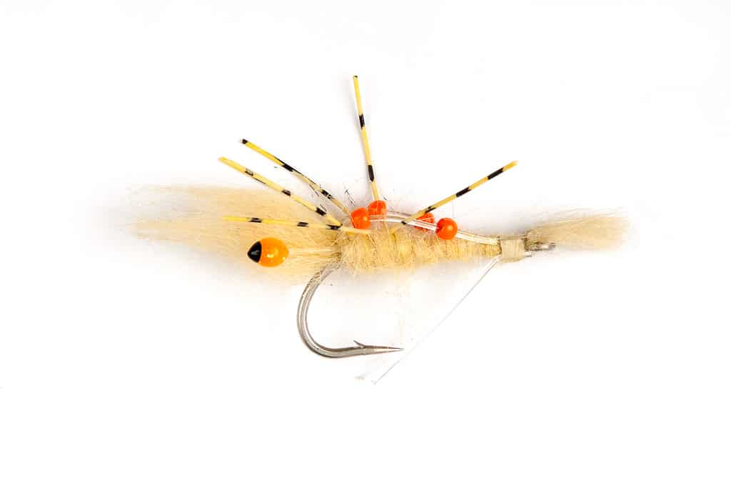 Mouches-Fulling-Mill-Brittany-Fly-Fishing-3