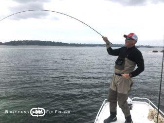 Pêche du bar à la mouche en Baie de Morlaix