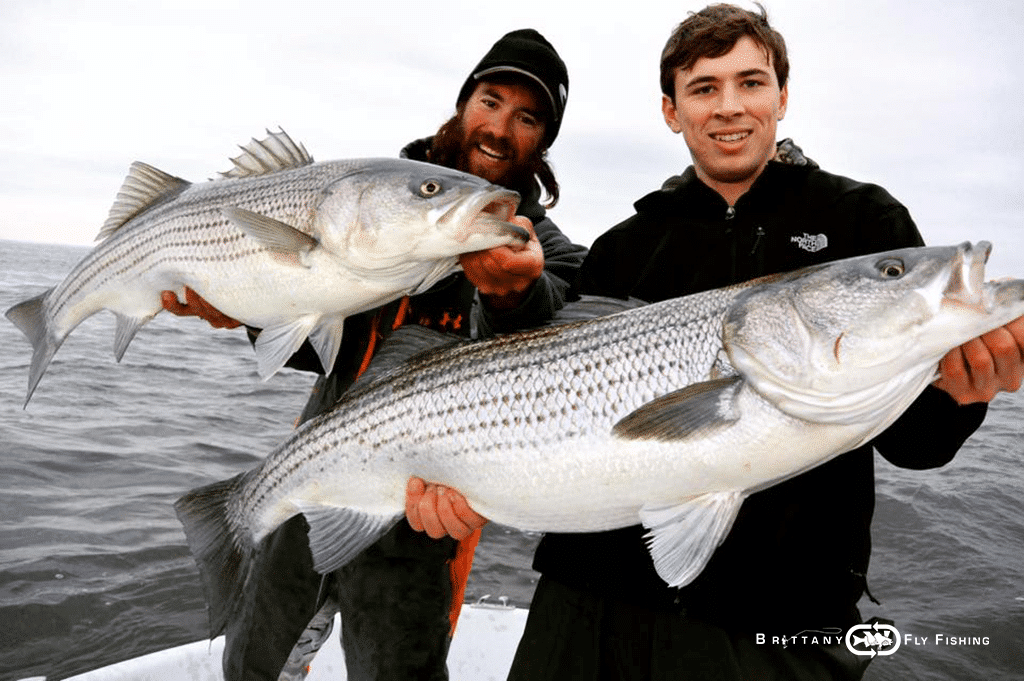 02-usa-east-coast-voyage-fly-fishing-striped-bass