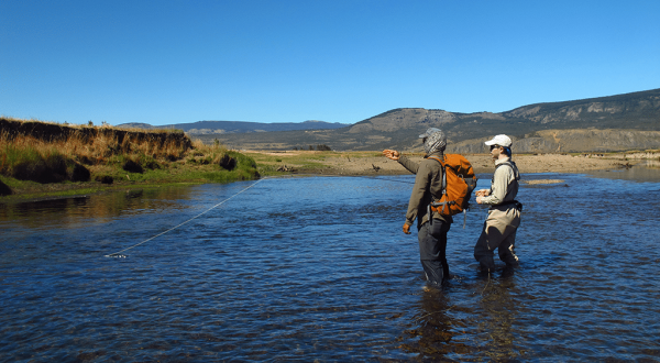 01-chili-chile-patagonia-voyage-fly-fishing-brown-trout