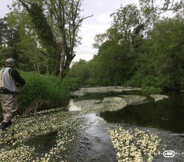 01-riviere-irlande-fly-fishing