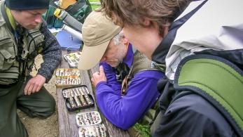 Initiation à la pêche de la truite à la mouche