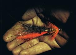 Nouveau catalogue & nouvelles mouches Fulling Mill 2015