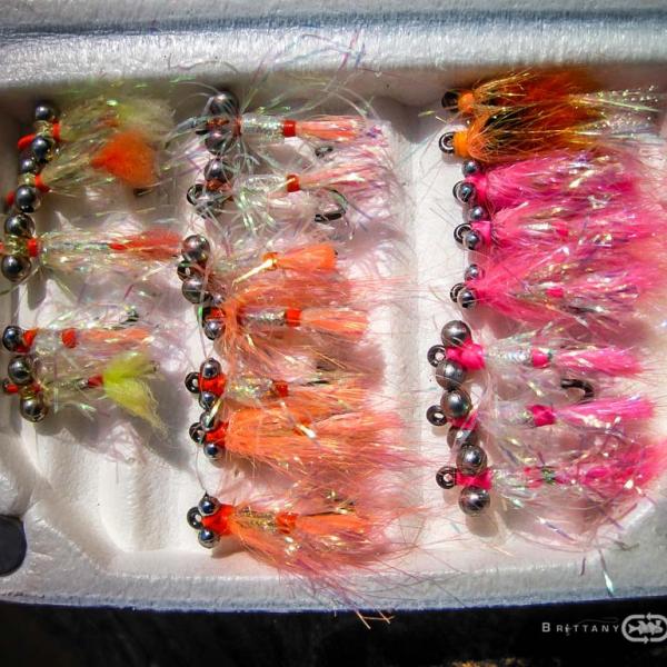 Pêche de l'Alose sur le Blavet | Brittany Fly Fishing