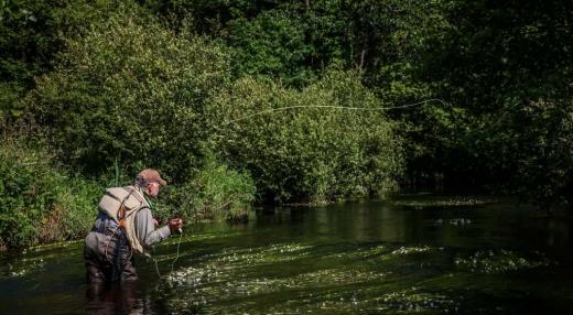 Pêche à la mouche sur l'Elorn | Brittany Fly Fishing