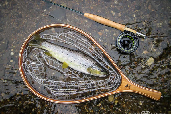 Peche-Riviere-Hyeres-Brittany-Fly-Fishing-1