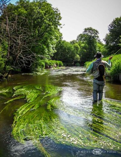 Pêche à la mouche sur l'Hyeres | Brittany Fly Fishing
