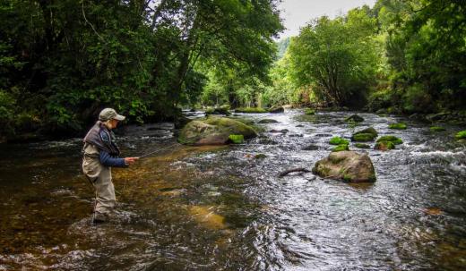 Pêche à la mouche sur le Léguer | Brittany Fly Fishing