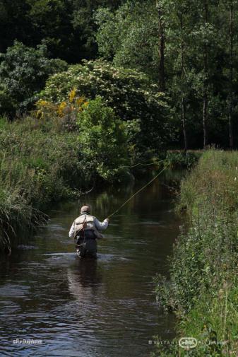 Pêche à la mouche sur la Penzé | Brittany Fly Fishing