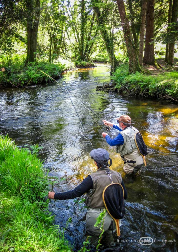 Perfectionnement Pêche à la Mouche | Brittany Fly Fishing