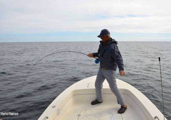 Voyage-USA-Cape-Cod-Brittany-Fly-Fishing-8